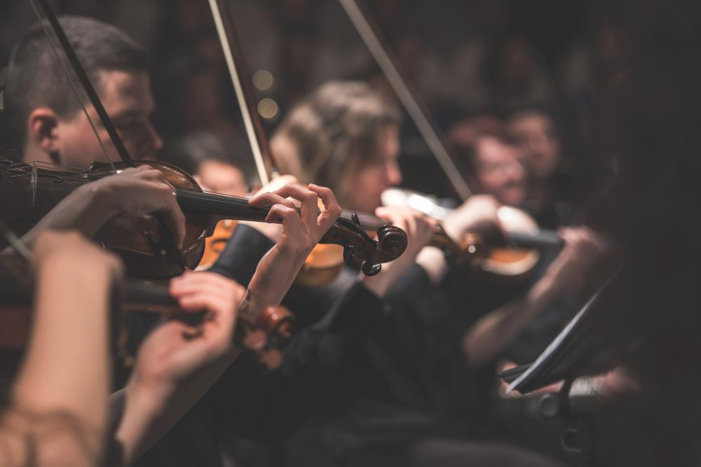 A violin section of young adult musicians.